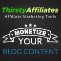 ThirstyAffiliates - the Best Affiliation Plugin