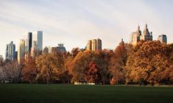 Autumn has arrived, also in New York!